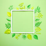 Trendy Summer Tropical Leaves Stock Photos