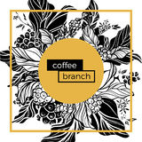 Trendy template. Coffee branches with leaves, flowers and natural coffee beans. Vector Royalty Free Stock Photography