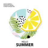 Trendy tropic and lemon background.Vector illustration Stock Images