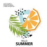 Trendy tropic and orange background.Vector Stock Photos