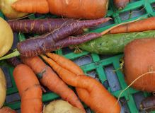 Trendy ugly misshapen root vegetable. (carrots and potatoes) at a French farmers market Stock Photo