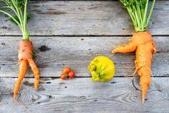 Trendy vegetables on barn wood. Trendy organic carrot, tomatos, leek and lemob from home garden bed on barn wood table, Australian grown Royalty Free Stock Photo