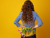 Trendy woman against yellow background holding wilted flowers. Seen from behind trendy woman with long wavy brunette hair against yellow background holding Stock Photos