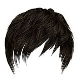 Trendy  woman man short  hairs  with fringe  . dark  brown   color .  beauty style . realistic  3d royalty free illustration