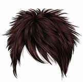 Trendy woman short hairs brown colors.fringe . fashion beauty s stock illustration