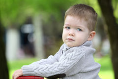 Trendy 2 years old baby boy posing. In spring/autumn park royalty free stock photography