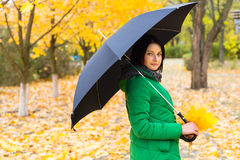 Trendy young woman taking a stroll in the park. With her umbrella as she collects some of the vivid yellow autumn leaves from the woodland trees Stock Photo