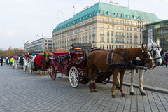 Trenery na Pariser Platz obraz royalty free
