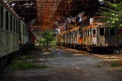 Trenes del cargo en depósito de tren viejo fotos de archivo libres de regalías