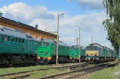 Trenes en un depósito Foto de archivo libre de regalías