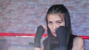 Trenes morenos hermosos en el ring de boxeo