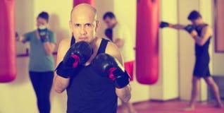 Trenes profesionales del boxeador imagen de archivo