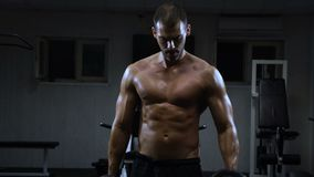 Treni dell'uomo nella palestra L'uomo atletico si prepara con le teste di legno, pompanti il suo bicipite video d archivio