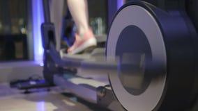 Trening w Gym pokoju zbiory wideo