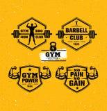 Treningu Gym sport i sprawności fizycznej motywaci projekta Wektorowi elementy na Grunge tle ilustracja wektor