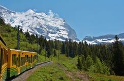 Treno attraverso le montagne Fotografie Stock