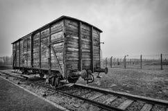 Treno a Auschwitz Immagini Stock Libere da Diritti