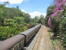 Treno australiano della campagna alla stazione ferroviaria Immagini Stock