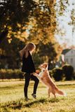 Treno biondo della ragazza il suo cane border collie in parco verde in sole fotografie stock libere da diritti