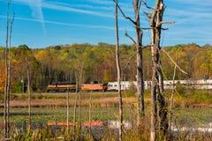 Treno che passa palude Immagine Stock Libera da Diritti