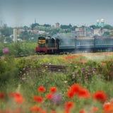 Treno che viaggia dalla ferrovia in steppa di fioritura Fotografie Stock