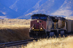 Treno del carbone Fotografia Stock