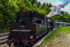 Treno del motore a vapore vecchio nel lago sanguinato Fotografia Stock