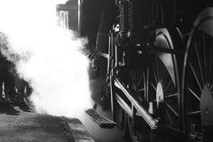Treno del vapore con la gente Fotografia Stock Libera da Diritti