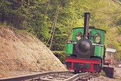 Treno del vapore del calibro stretto Fotografia Stock