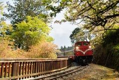 Treno della foresta Fotografie Stock