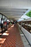 Treno della metropolitana Fotografie Stock Libere da Diritti