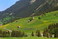 Treno della montagna delle alpi Fotografie Stock Libere da Diritti