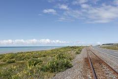 Treno della Nuova Zelanda di vias immagine stock
