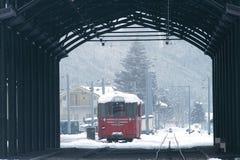 Treno dello Snowy Fotografie Stock Libere da Diritti