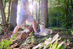 Treno di cane dall'uomo nella foresta contro il sole con i fasci di luce solare e di sunstars Immagine Stock Libera da Diritti