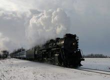 Treno di inverno Immagine Stock