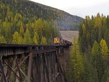 Treno di trasporto che comincia ad attraversare cavalletto immagine stock