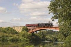 Treno e carrello del vapore. Fotografie Stock