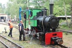 Treno ferroviario del vapore del calibro stretto Immagine Stock Libera da Diritti