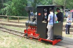 Treno ferroviario del vapore del calibro stretto Fotografia Stock