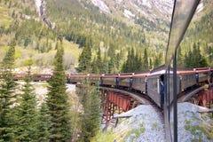 Treno lungo Immagini Stock