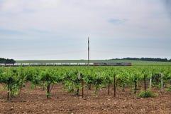 Treno merci Agricoltura in Taman Fotografia Stock Libera da Diritti