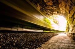 Treno nel tunnel Immagini Stock