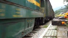Treno nostalgico del calibro stretto stock footage