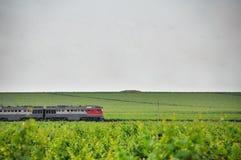 Treno passeggeri Agricoltura in Taman Fotografia Stock