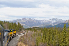 Treno in regione selvaggia d'Alasca Fotografia Stock Libera da Diritti