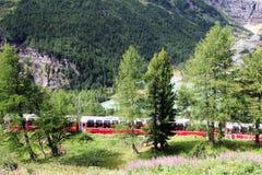Treno retic di Bernina Immagine Stock