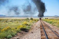 Treno Rio Grande del carbone del Colorado Fotografie Stock Libere da Diritti