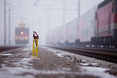 Treno sulla diramazione nebbiosa Immagini Stock