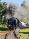Treno ungherese di nostalgia Fotografia Stock Libera da Diritti
